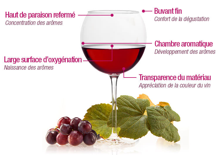 guide des vins - Détail verre