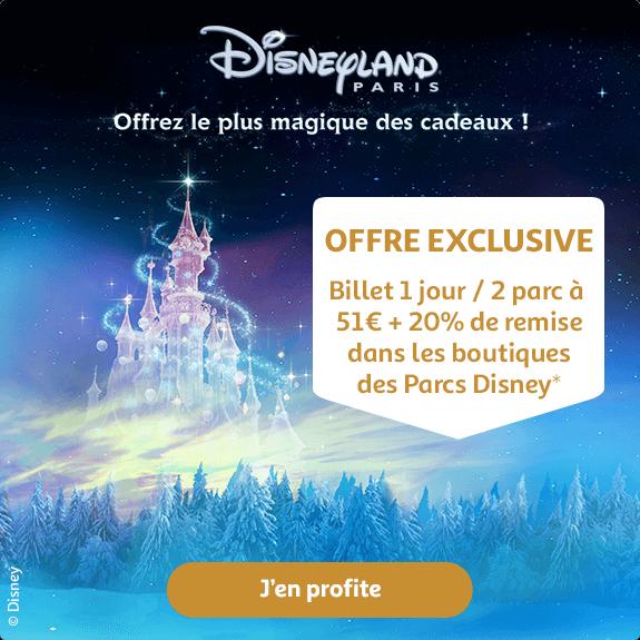 Billet 1 jour / 2 parcs à 51€ + 20% de remise dans les boutiques des parcs Disney*