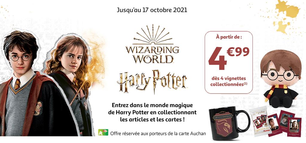 Entrez dans le monde magique de Harry Potter ! Jusqu'au 17 octobre 2021