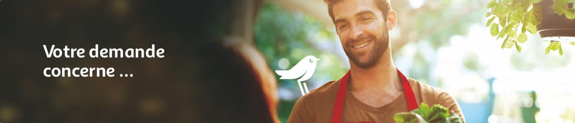 Carte Auchan Service Client.Contacter Auchan Fr Email Telephone Tchat Courrier